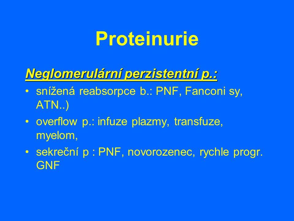Proteinurie Neglomerulární perzistentní p.: