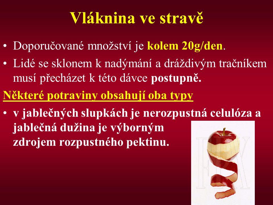 Vláknina ve stravě Doporučované množství je kolem 20g/den.