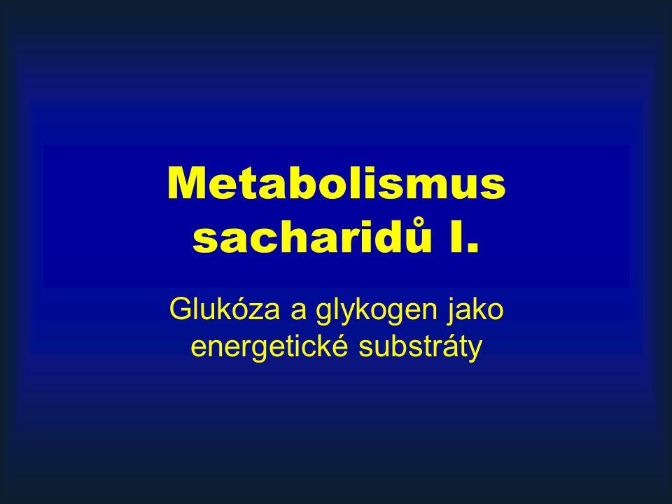 Metabolismus sacharidů I.