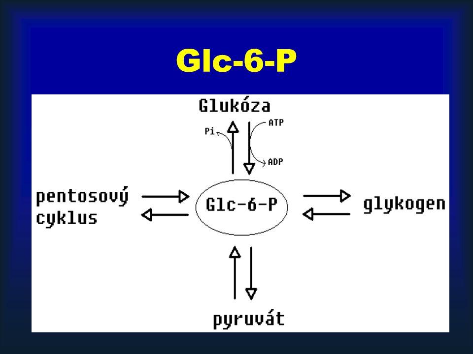 Glc-6-P