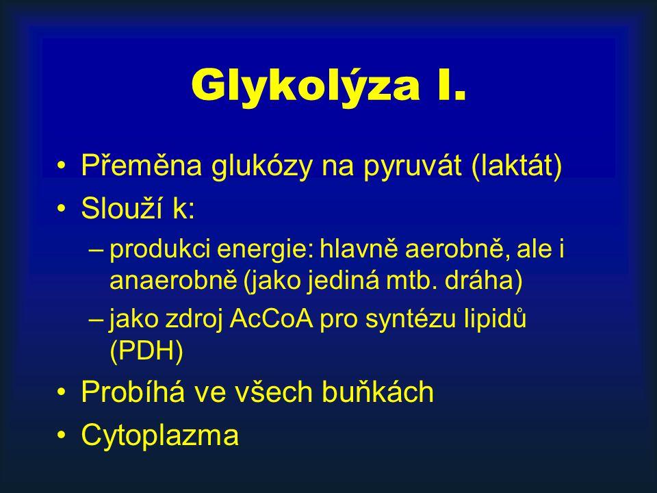 Glykolýza I. Přeměna glukózy na pyruvát (laktát) Slouží k:
