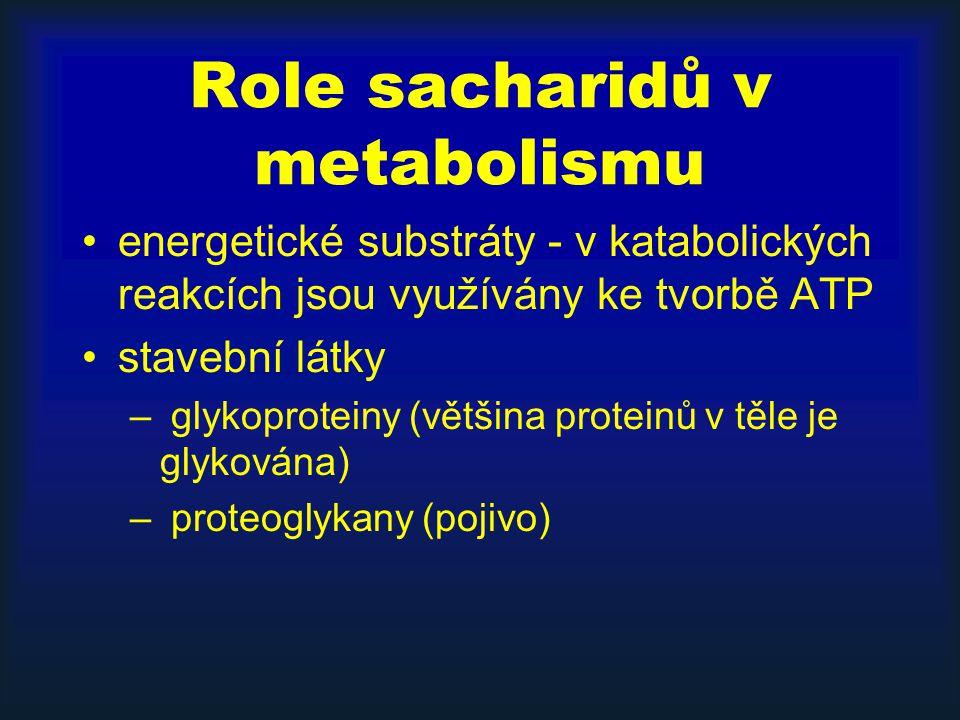 Role sacharidů v metabolismu