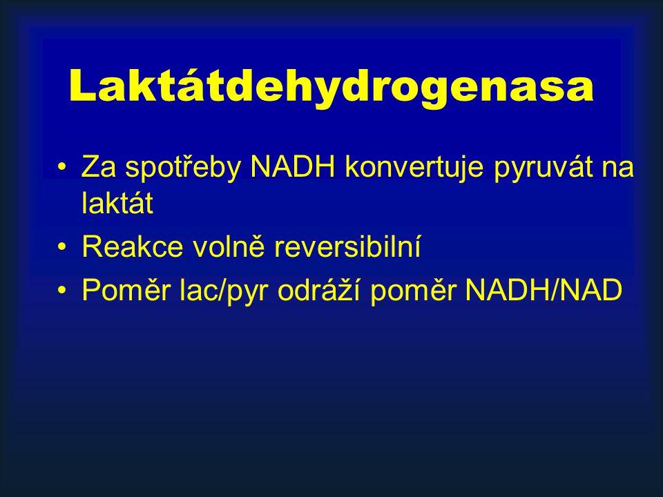 Laktátdehydrogenasa Za spotřeby NADH konvertuje pyruvát na laktát