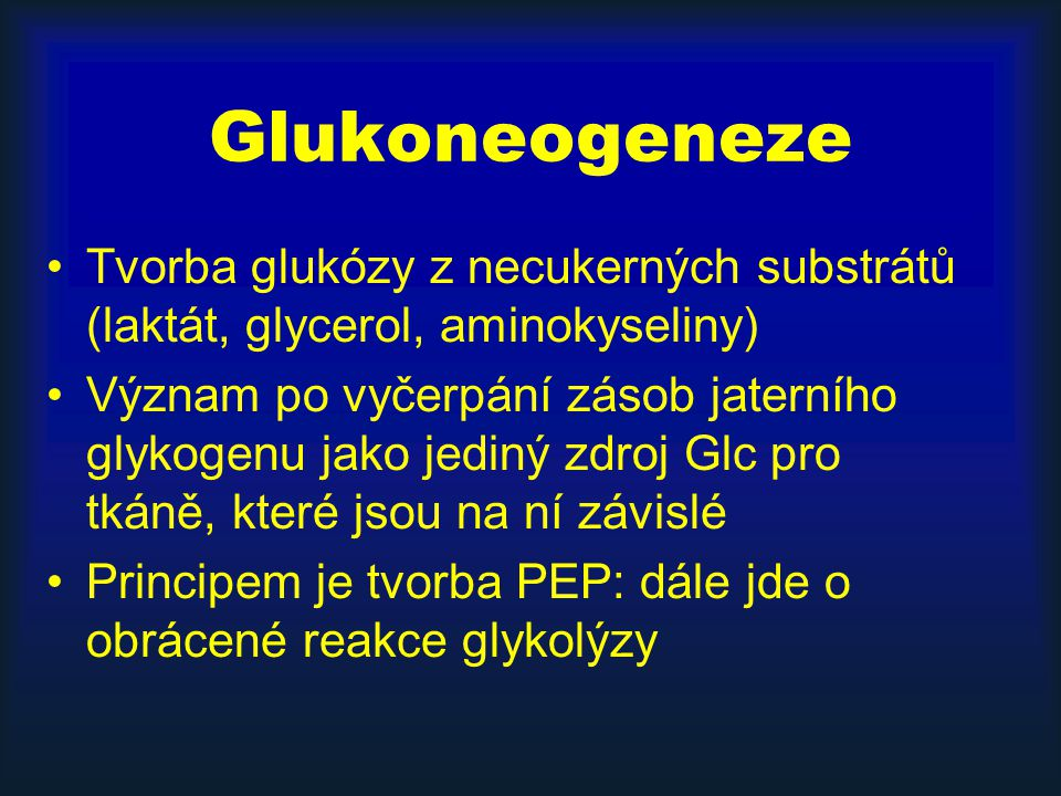 Glukoneogeneze Tvorba glukózy z necukerných substrátů (laktát, glycerol, aminokyseliny)