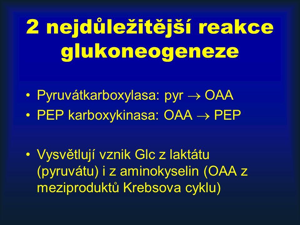 2 nejdůležitější reakce glukoneogeneze
