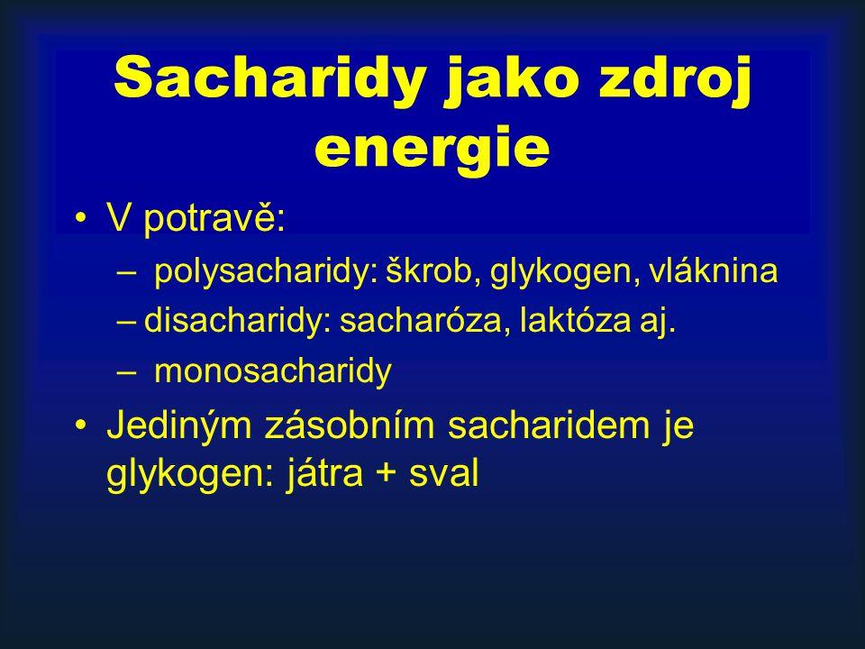 Sacharidy jako zdroj energie