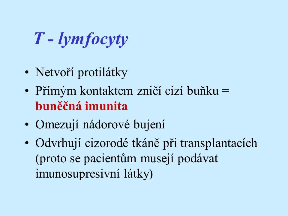 T - lymfocyty Netvoří protilátky