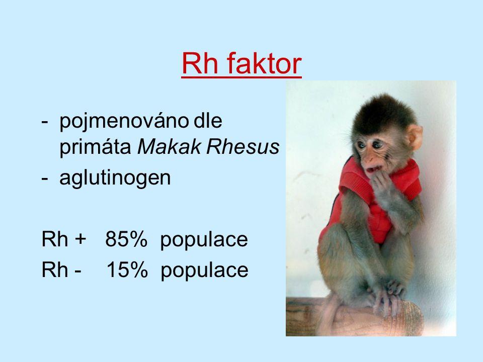 Rh faktor pojmenováno dle primáta Makak Rhesus aglutinogen