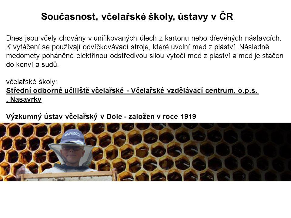 Současnost, včelařské školy, ústavy v ČR