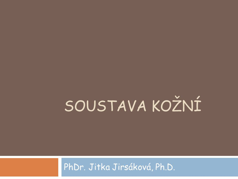 PhDr. Jitka Jirsáková, Ph.D.