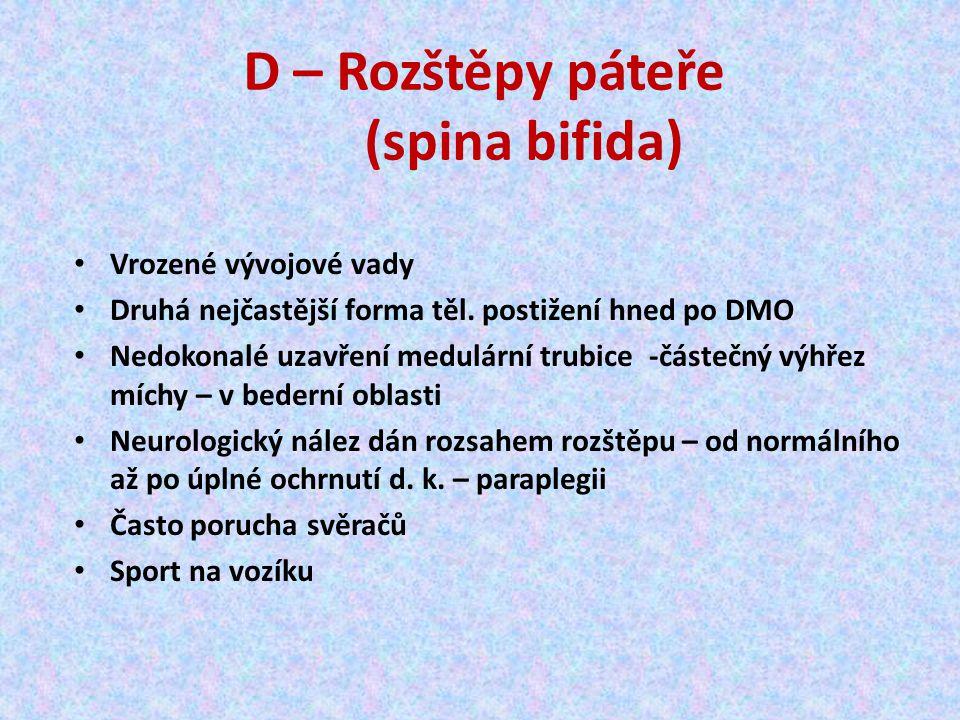 D – Rozštěpy páteře (spina bifida)