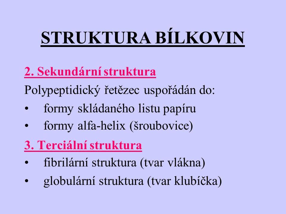 STRUKTURA BÍLKOVIN 2. Sekundární struktura