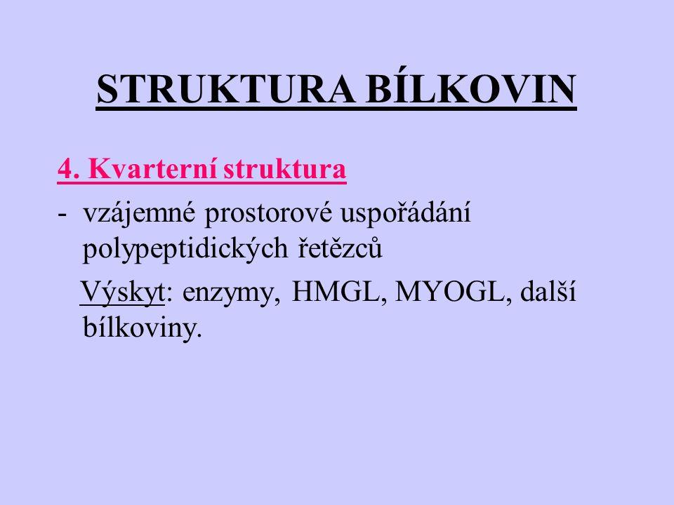 STRUKTURA BÍLKOVIN 4. Kvarterní struktura