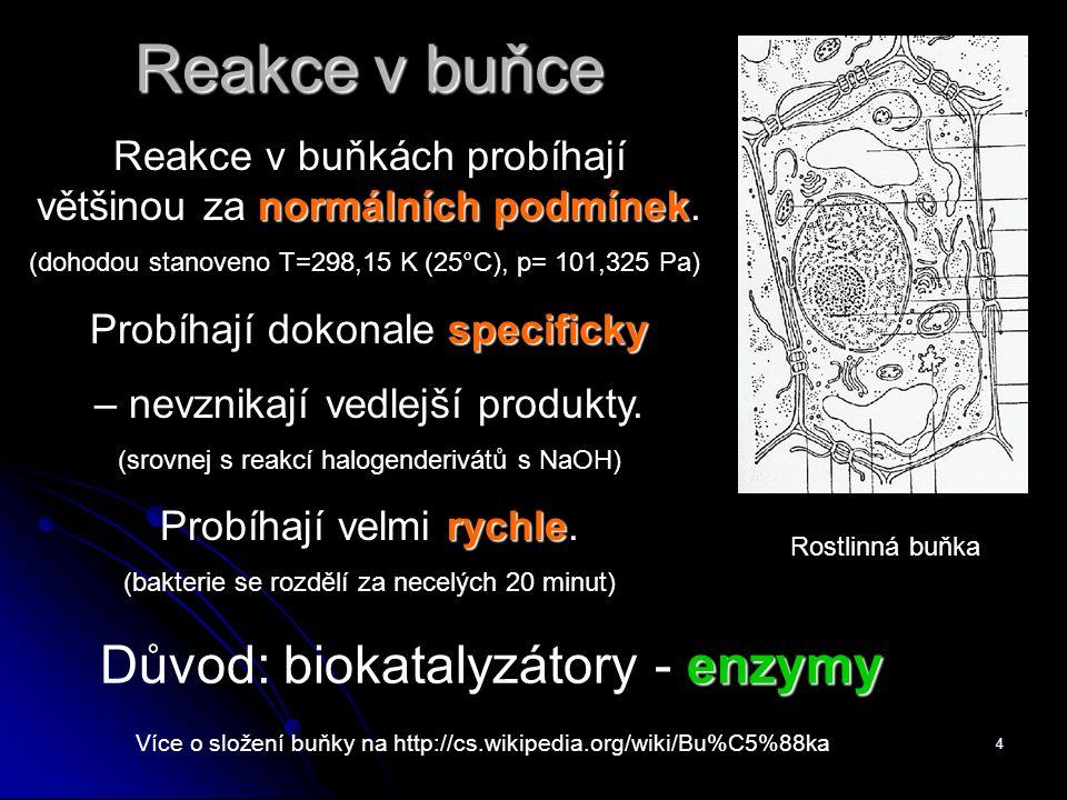 Reakce v buňce Důvod: biokatalyzátory - enzymy