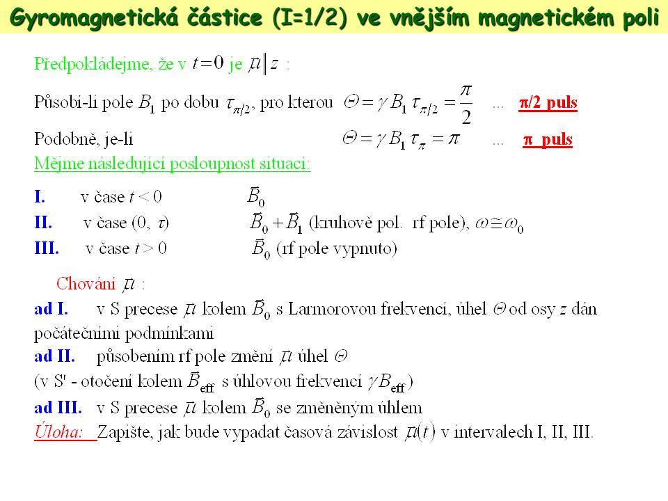 Gyromagnetická částice (I=1/2) ve vnějším magnetickém poli