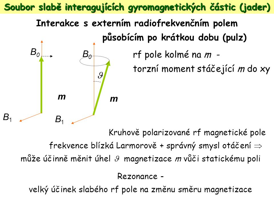 Soubor slabě interagujících gyromagnetických částic (jader)