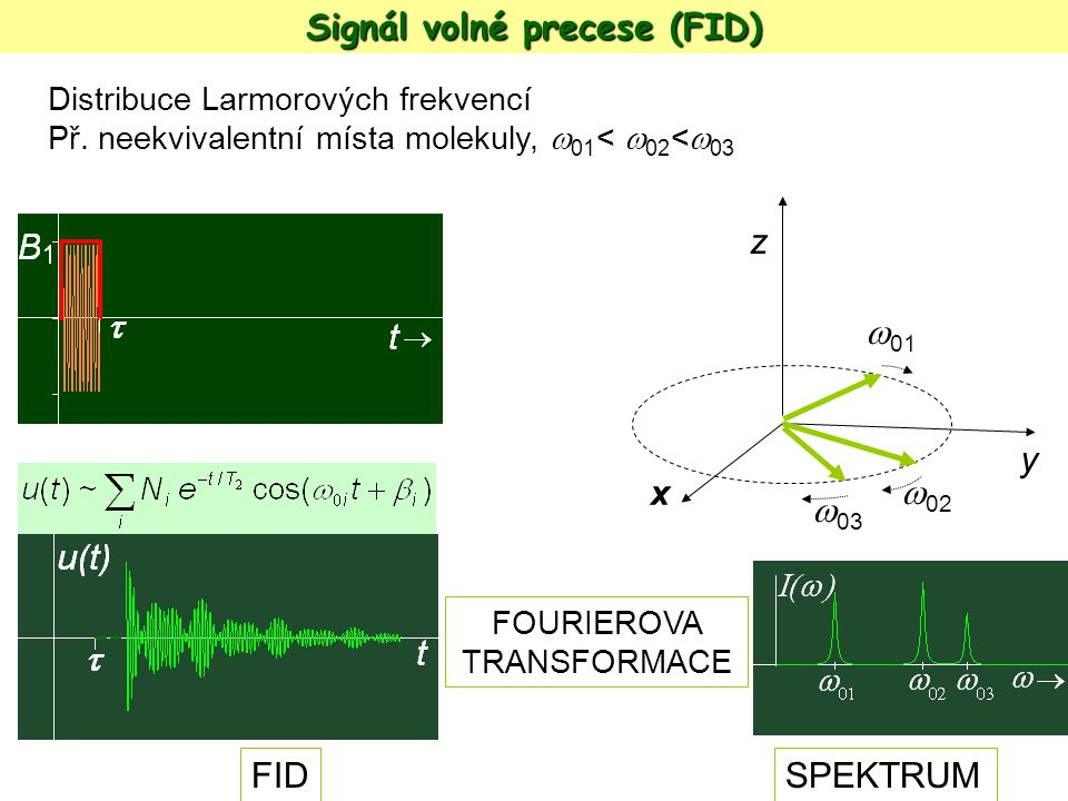 Signál volné precese (FID)