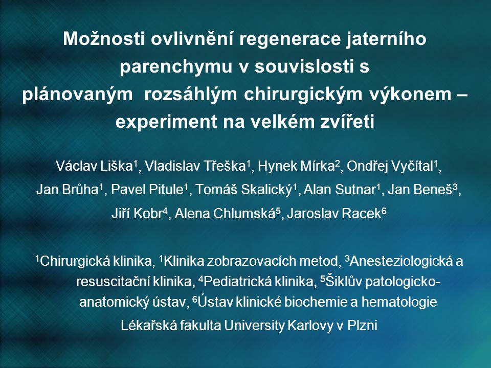 Možnosti ovlivnění regenerace jaterního parenchymu v souvislosti s plánovaným rozsáhlým chirurgickým výkonem – experiment na velkém zvířeti