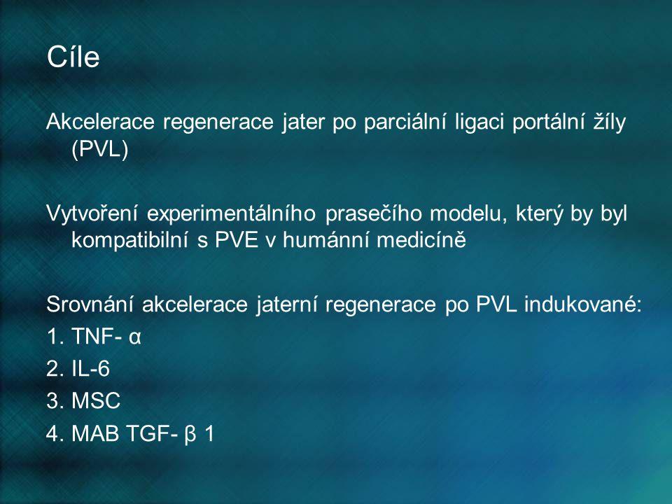 Cíle Akcelerace regenerace jater po parciální ligaci portální žíly (PVL)
