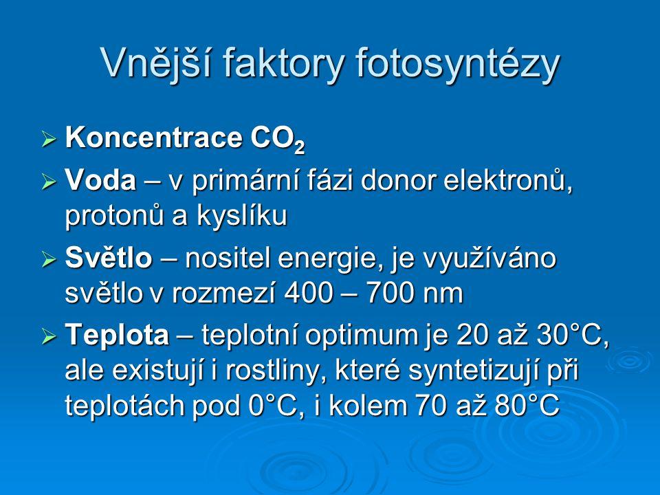 Vnější faktory fotosyntézy