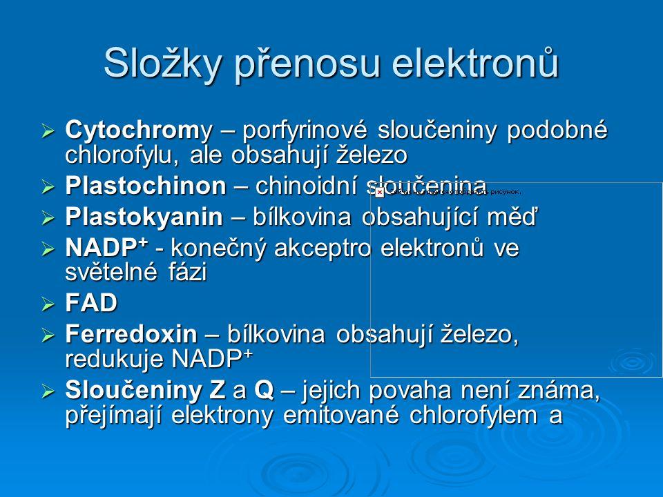 Složky přenosu elektronů