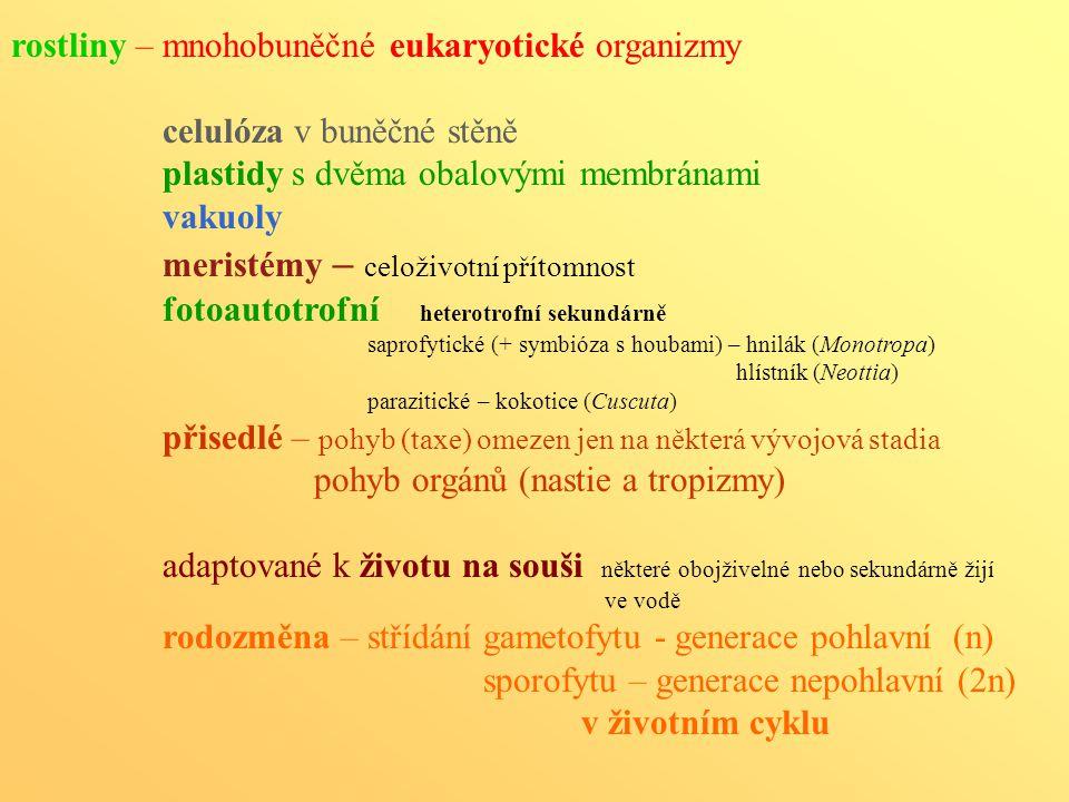 rostliny – mnohobuněčné eukaryotické organizmy