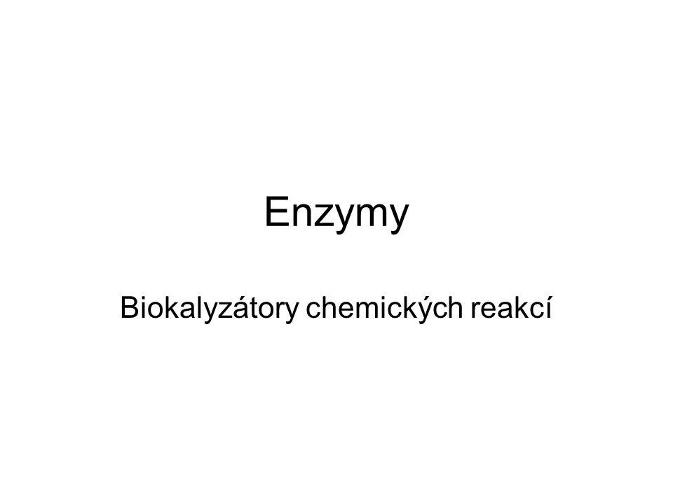 Biokalyzátory chemických reakcí