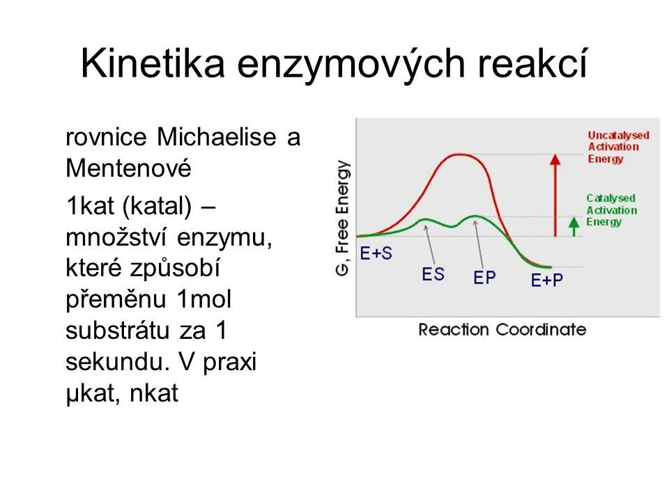 Kinetika enzymových reakcí