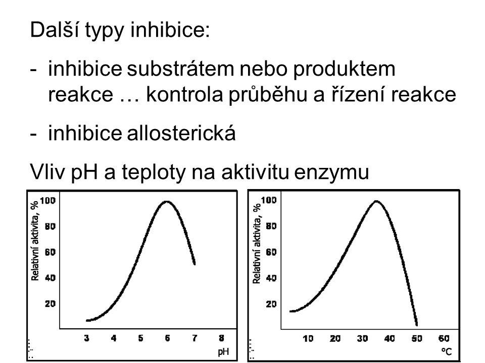 Další typy inhibice: inhibice substrátem nebo produktem reakce … kontrola průběhu a řízení reakce. inhibice allosterická.