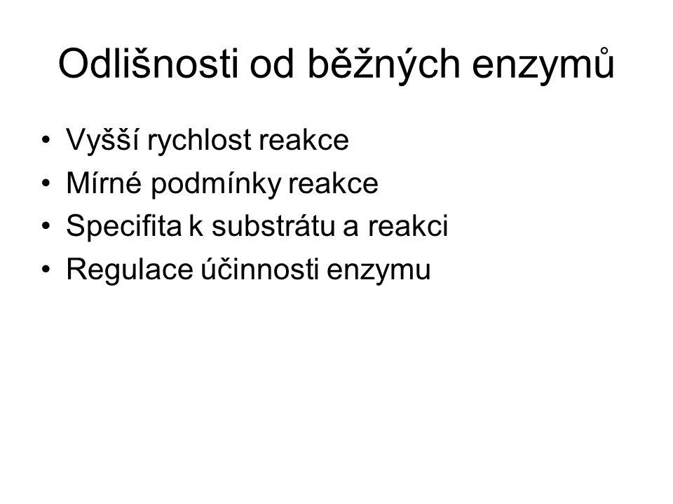 Odlišnosti od běžných enzymů