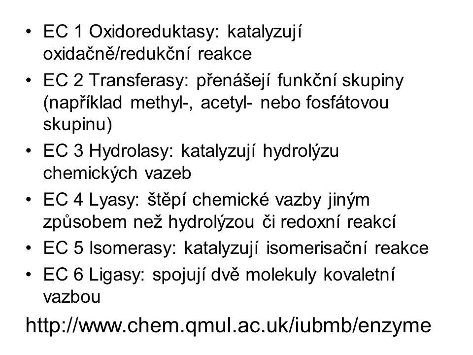 EC 1 Oxidoreduktasy: katalyzují oxidačně/redukční reakce