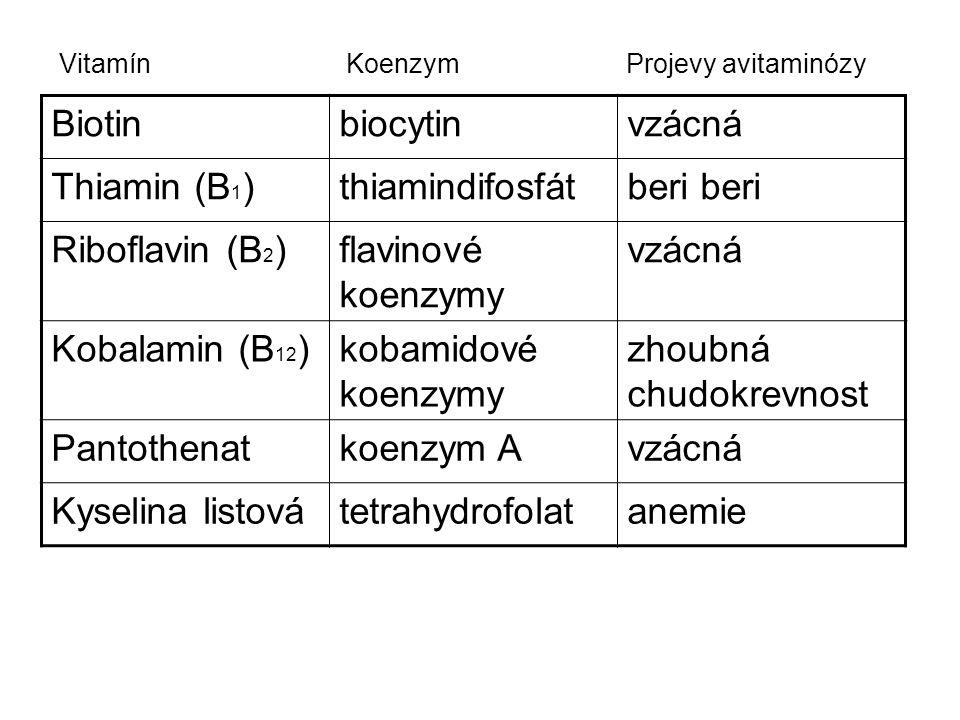 zhoubná chudokrevnost Pantothenat koenzym A Kyselina listová