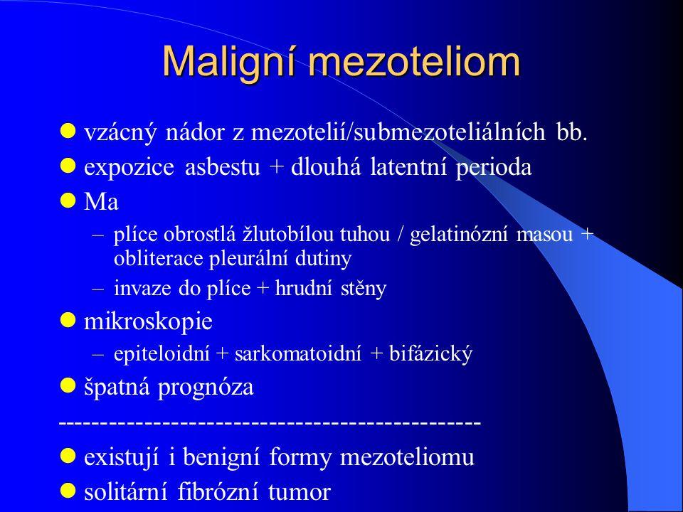 Maligní mezoteliom vzácný nádor z mezotelií/submezoteliálních bb.