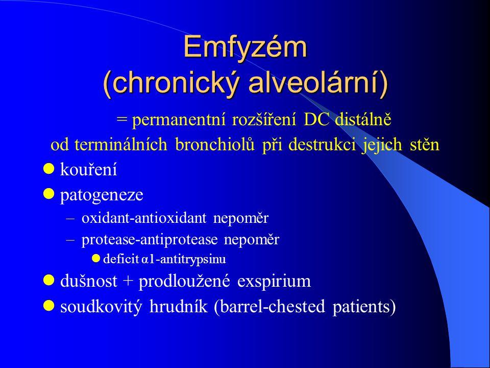 Emfyzém (chronický alveolární)