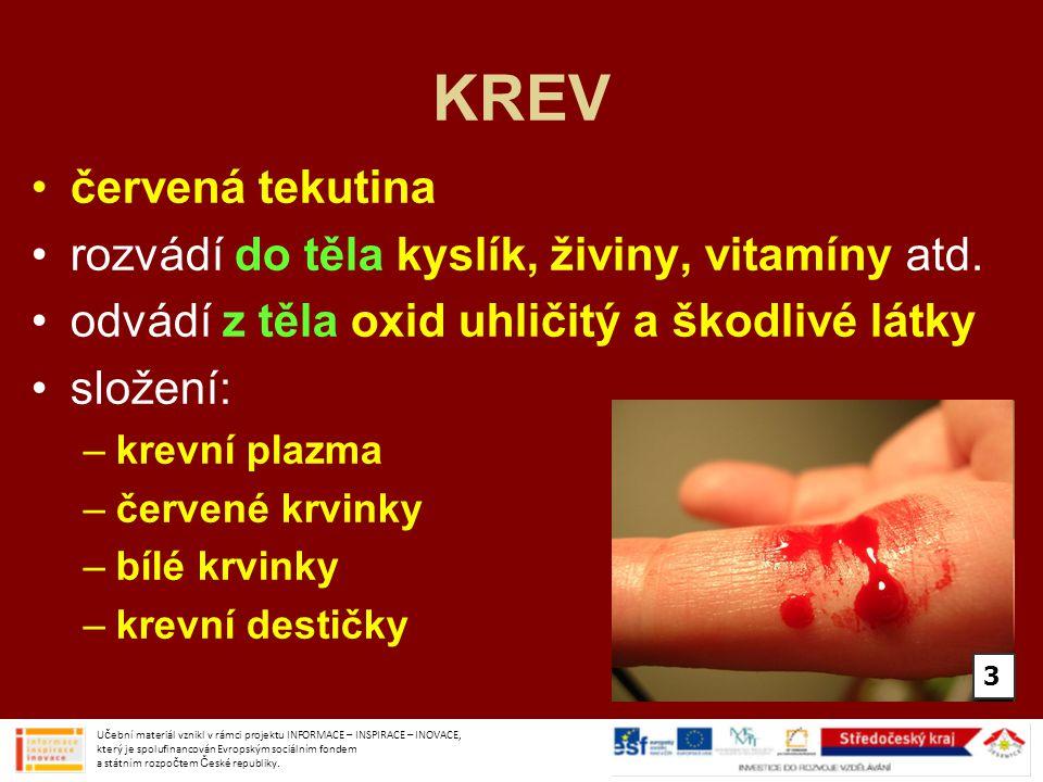 KREV červená tekutina rozvádí do těla kyslík, živiny, vitamíny atd.