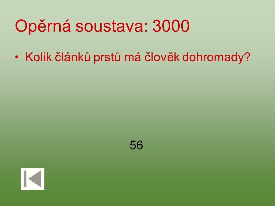 Opěrná soustava: 3000 Kolik článků prstů má člověk dohromady 56