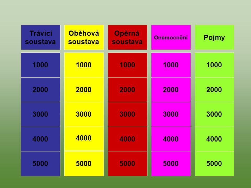 Trávicí soustava Oběhová soustava Opěrná soustava Pojmy 1000 1000 1000