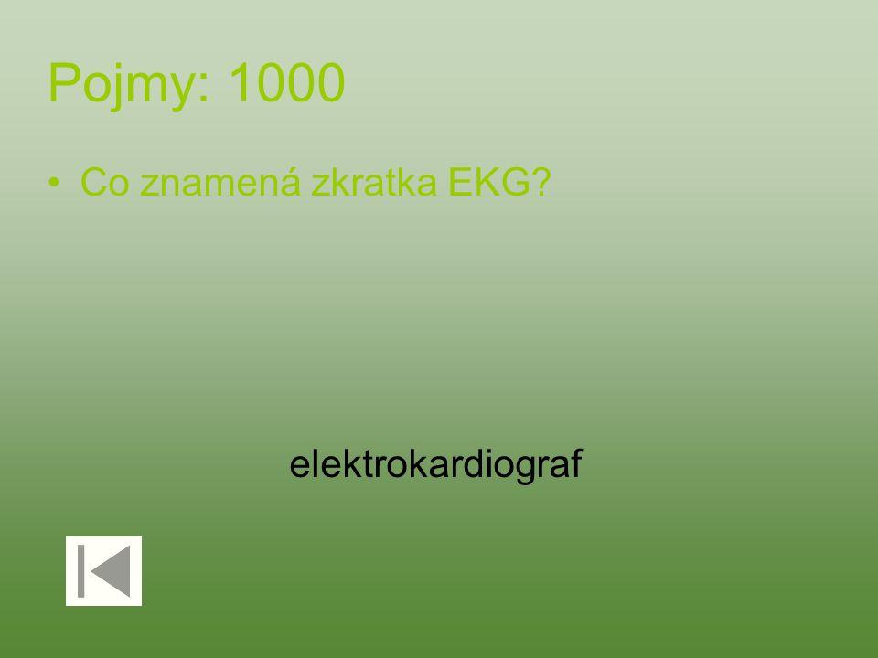 Pojmy: 1000 Co znamená zkratka EKG elektrokardiograf