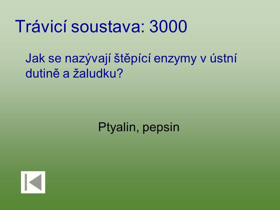 Trávicí soustava: 3000 Jak se nazývají štěpící enzymy v ústní dutině a žaludku Ptyalin, pepsin