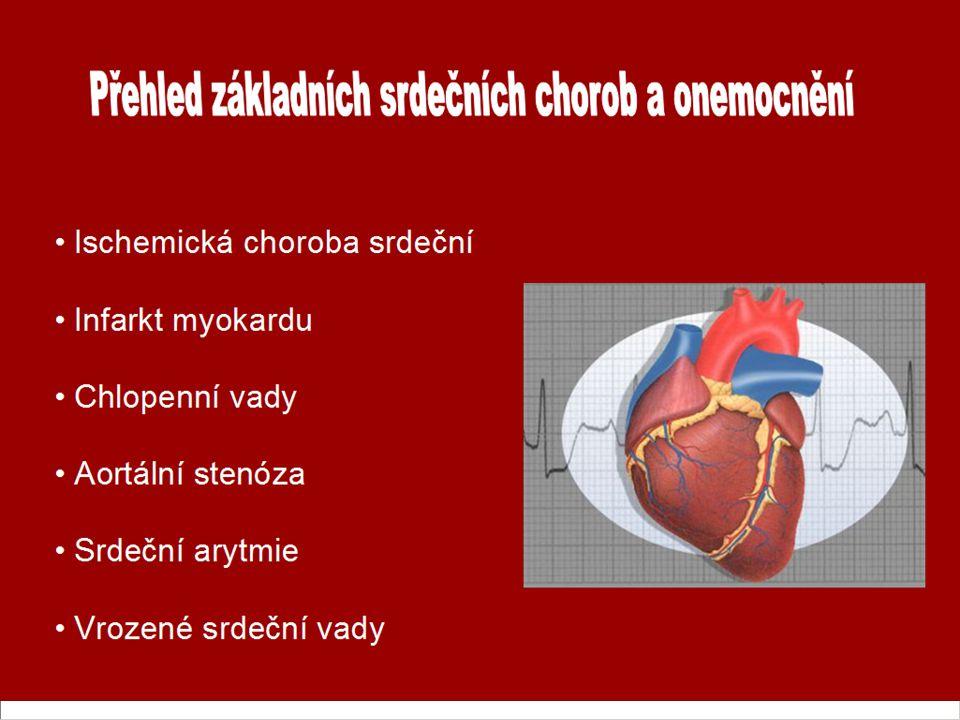 Přehled základních srdečních chorob a onemocnění