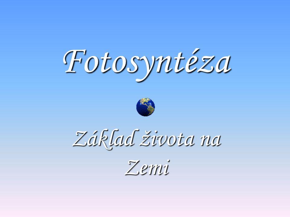 Fotosyntéza Základ života na Zemi