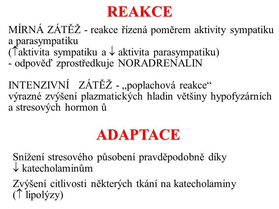 REAKCE MÍRNÁ ZÁTĚŽ - reakce řízená poměrem aktivity sympatiku a parasympatiku. (aktivita sympatiku a  aktivita parasympatiku)