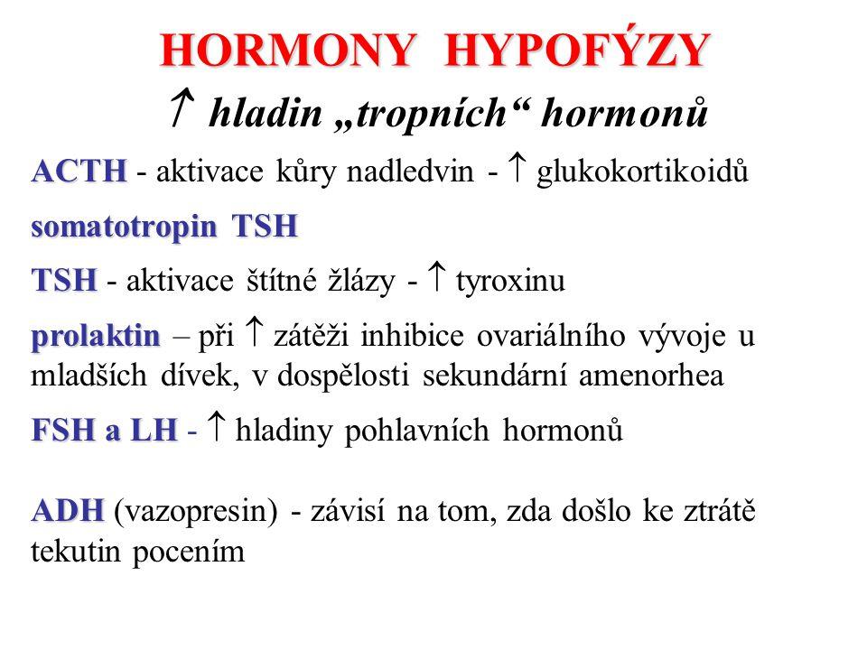 """HORMONY HYPOFÝZY  hladin """"tropních hormonů"""