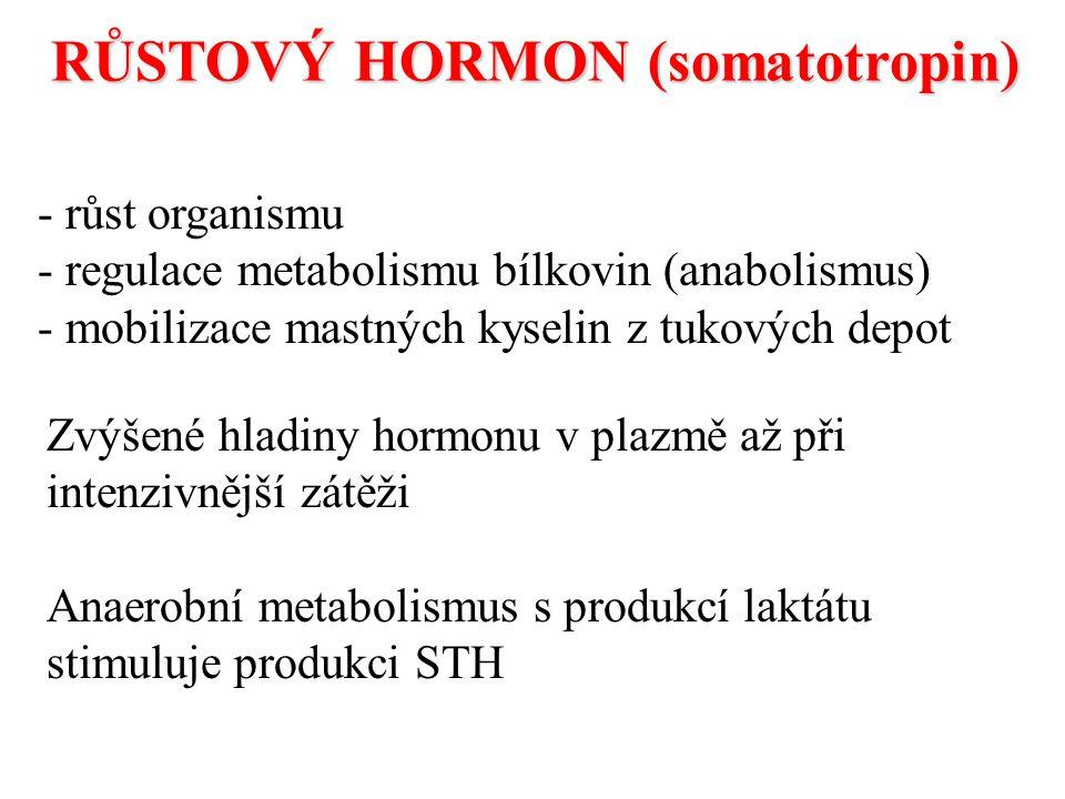 RŮSTOVÝ HORMON (somatotropin)