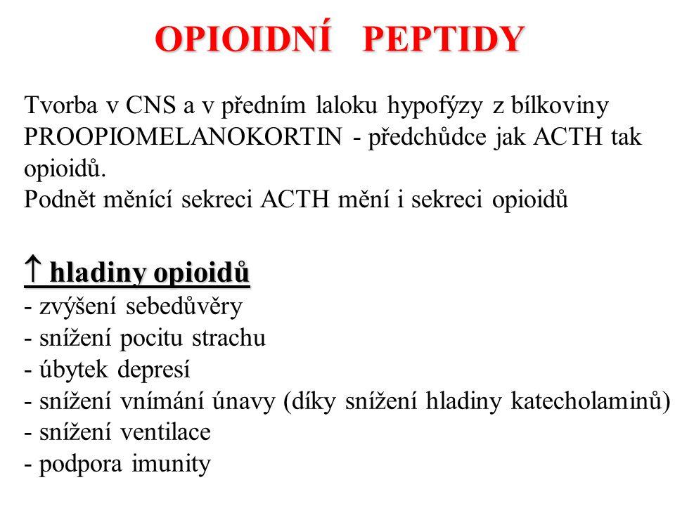 OPIOIDNÍ PEPTIDY  hladiny opioidů