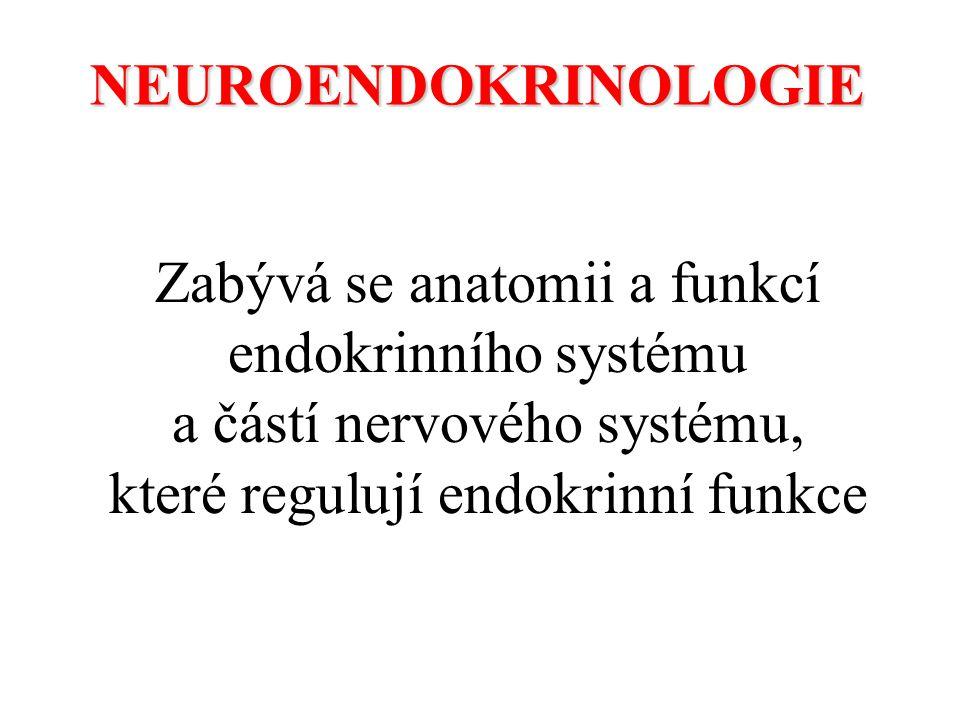Zabývá se anatomii a funkcí endokrinního systému