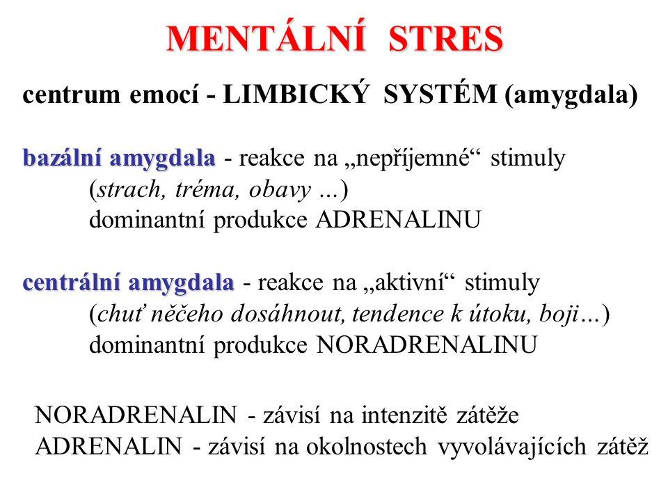 MENTÁLNÍ STRES centrum emocí - LIMBICKÝ SYSTÉM (amygdala)