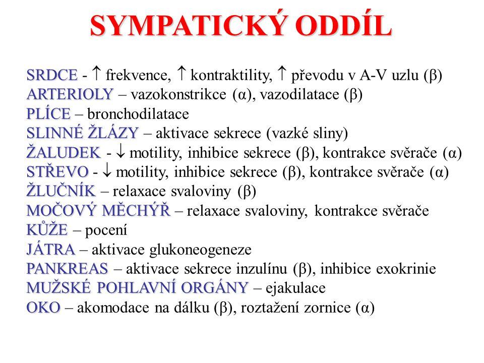 SYMPATICKÝ ODDÍL SRDCE -  frekvence,  kontraktility,  převodu v A-V uzlu (β) ARTERIOLY – vazokonstrikce (α), vazodilatace (β)