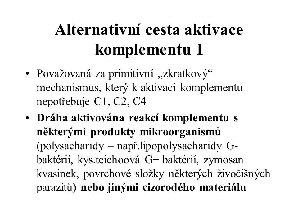 Alternativní cesta aktivace komplementu I