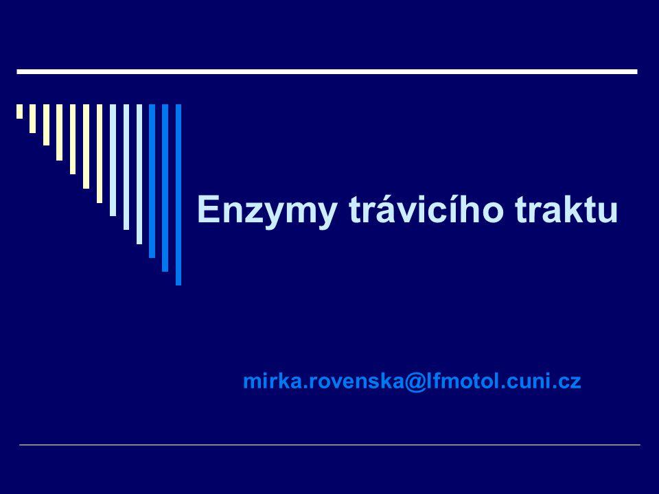 Enzymy trávicího traktu